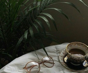 plants, coffee, and style image