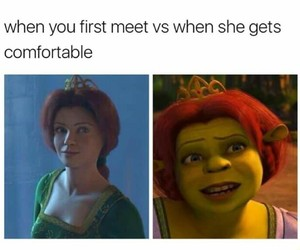 comedy, dreamworks, and fiona image