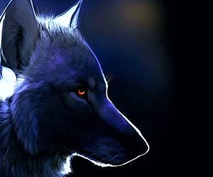 wolf and animal image