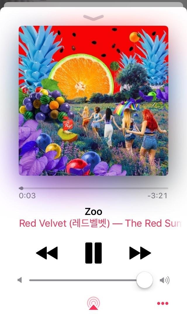 zoo, kpop k-pop k pop, and red summer image