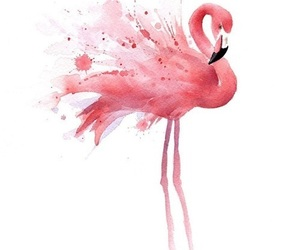 flamingo, art, and pink image