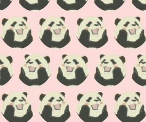 panda, wallpaper, and fondo image