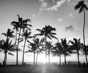 beach, black and white, and summer image