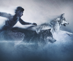teen wolf, wolf, and tyler posey image
