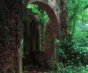 nature, fantasy, and medieval image