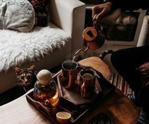 tea, cat, and coffee image