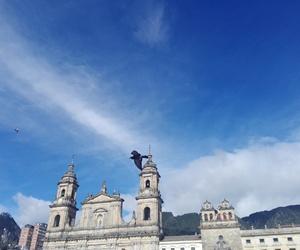 Image by paula_andrea2206