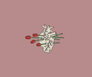 wallpaper, heart, and rose image
