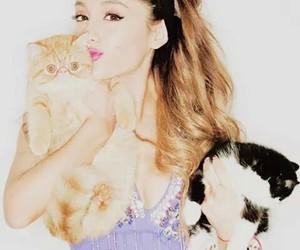 cats and ariana grande image