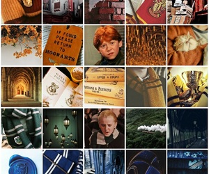 aesthetic, potter, and blue image