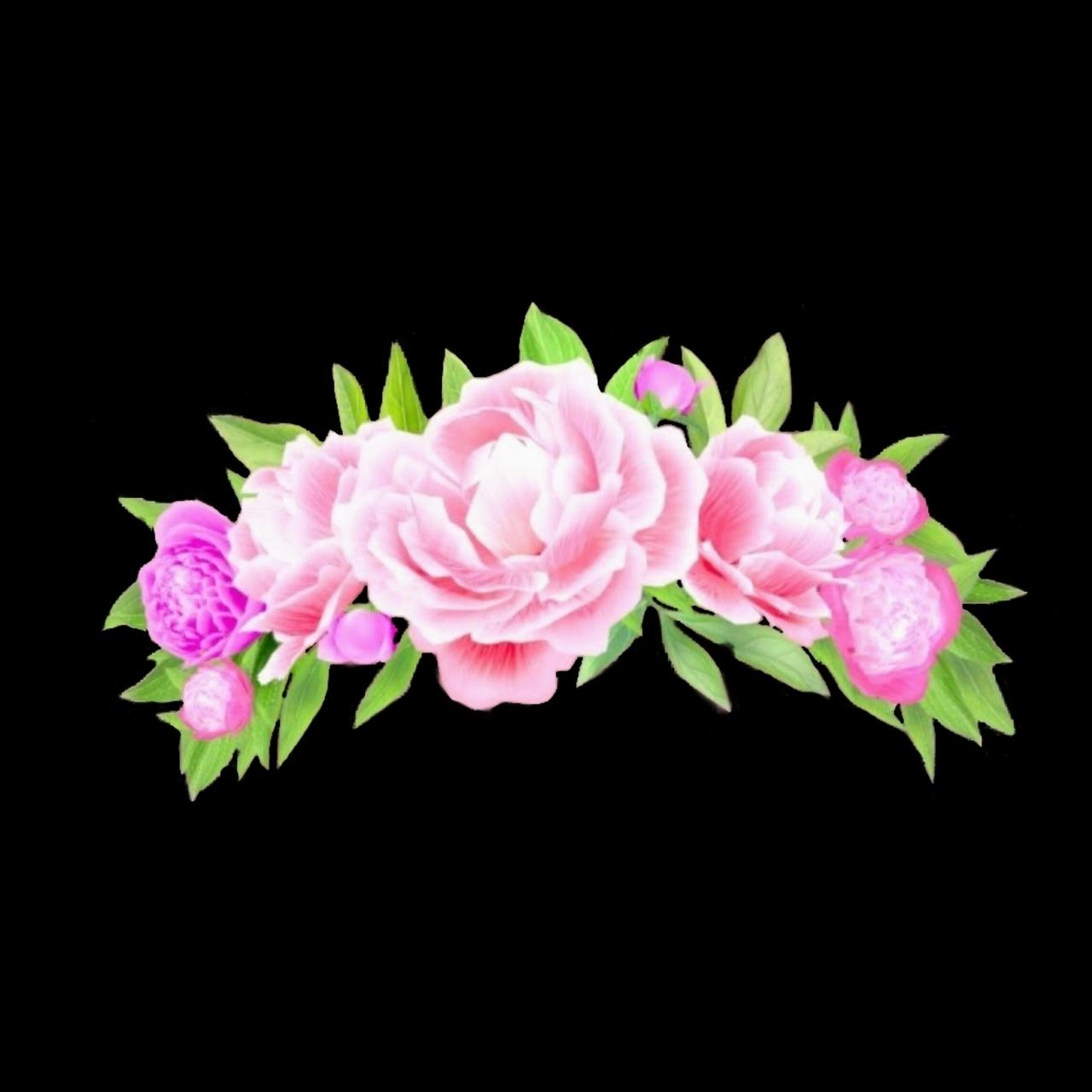 Flower crown snapchat filter overlay on we heart it izmirmasajfo