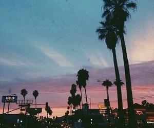sunset, palm trees, and beautiful image