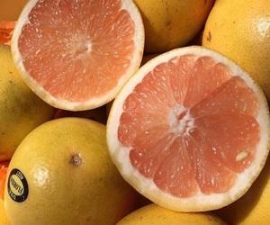 orange and tropical image