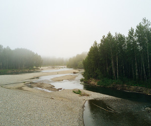 forest, forks, and la push image