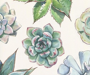 art, succulents, and cactus image