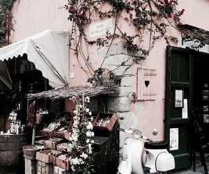 pink, flowers, and travel image