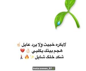 ﻋﺮﺑﻲ, بغداديات, and شعر شعبي image