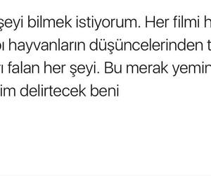 Image by Gün..