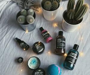 lush collection tumblr, lush bomb tumblr, and lush cactus tumblr image