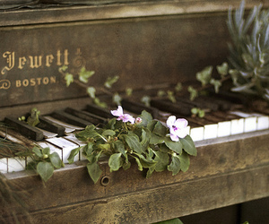 flowers and piano image