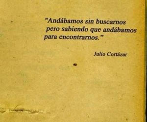 julio cortazar, frases, and books image