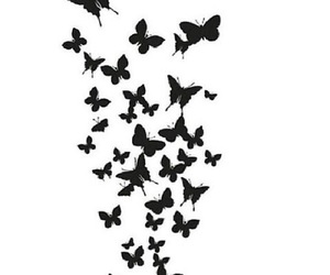 overlay and butterfly image
