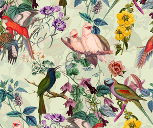 background, birds, and botanical image