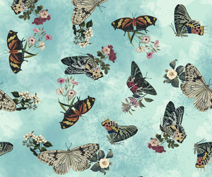 background, botanical, and butterfly image