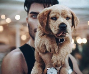 boys, guys, and puppies image