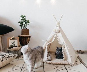 cats, deco, and decor image