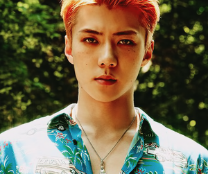 exo, sehun, and kpop image