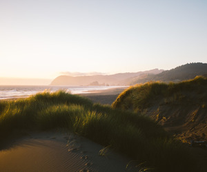 beach, sunlight, and nature image