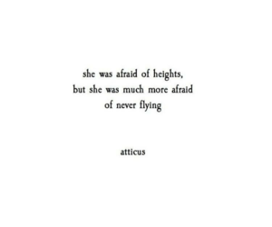 quote and atticus image