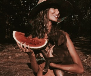 watermelon, animal, and dog image
