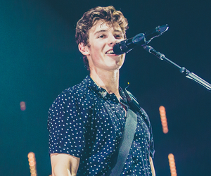 concert, music, and shawn mendes image