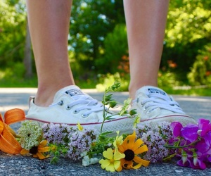 converse, flowers, and photography image