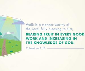bible, verse, and walk image