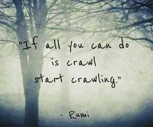 crawl and Rumi image