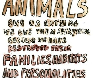 animal and vegan image