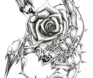scorpio and rose image