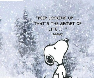 snoopy, quotes, and life image
