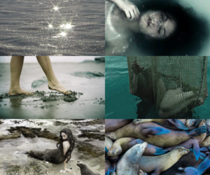 fantasy, selkie, and { blue } image