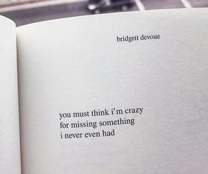 poetry, quote, and bridgit devoue image