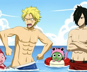 fairy tail, frosch, and lector image