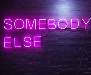 the 1975, neon, and somebody else image