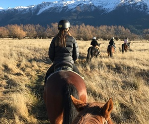 country, horses, and nz image