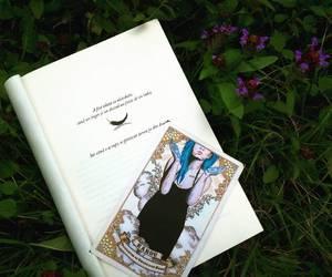book, karou, and daughterofsmokeandbone image
