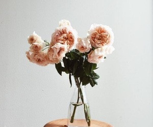 flowers, photography, and indie image
