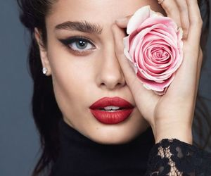taylor hill, model, and rose image