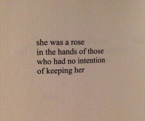 quotes, rose, and sad image